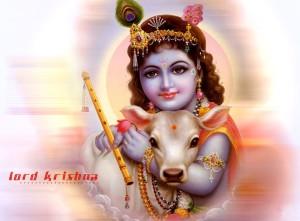 Krishna 6