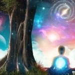 cosmo universe