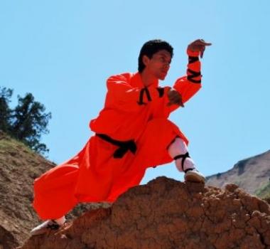 Стиль Богомола, или Танлан-цюань