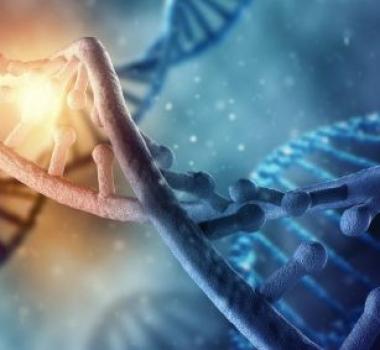 Активация генов ДНК, богиня Бахти, энергетический канал очищения генных цепочек
