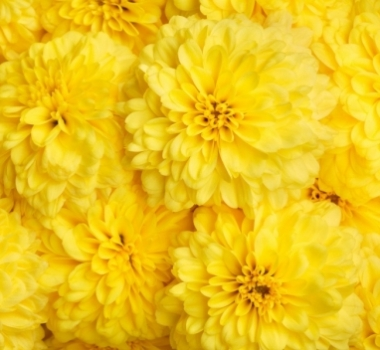 Энергетические свойства желтого цвета